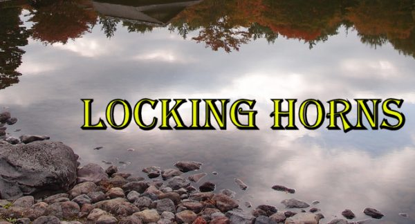 How to do Locking Horns in Kenpo Karate