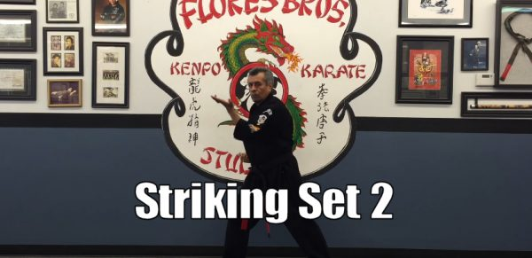 How to do Kenpo Karate Striking set 2