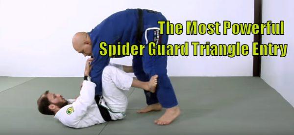 Spider Guard Triangle