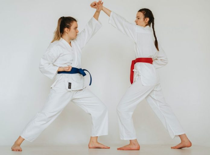 The Techniques in Karate