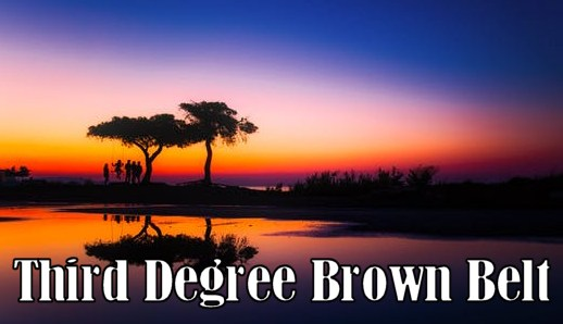 Kenpo Kaarate Third Degree Brown Belt