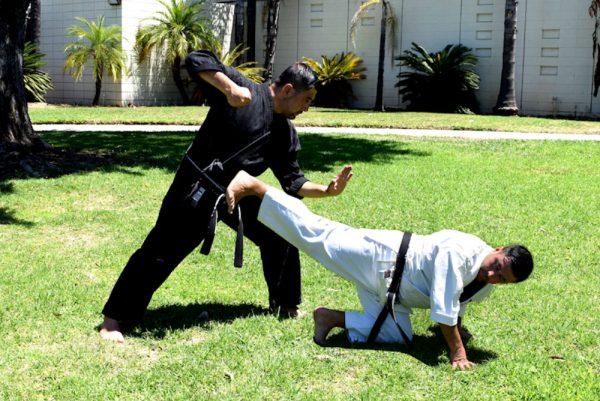 Applied Ushiro Geri or Back Kick