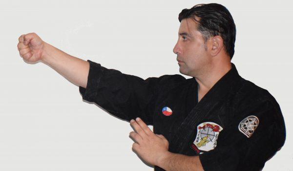 Vertical Punch in Kenpo Karate