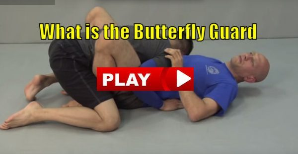 What is the Butterfly Guard