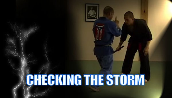 Checking the Storm Self defense technique