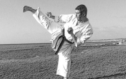 These are Karate Kicks
