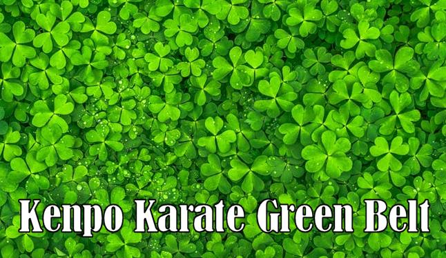American Kenpo Green Belt Requirements