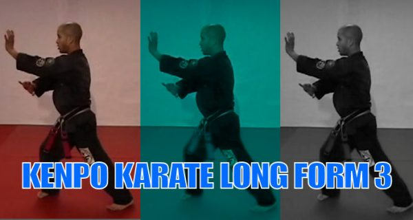How to do Long Form 3 American Kenpo Karate