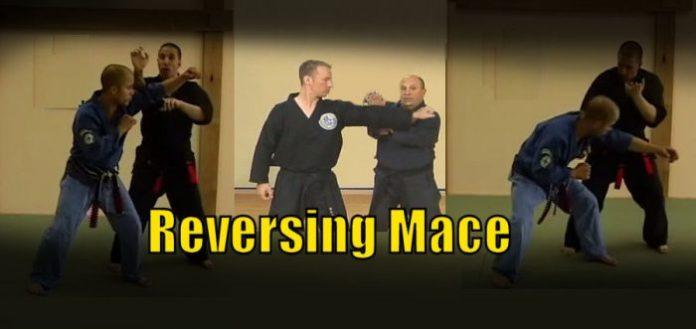 Reversing Mace American Kenpo Karate