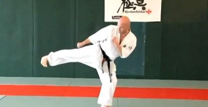This is Kansetsu Geri - Knee Joint Kick