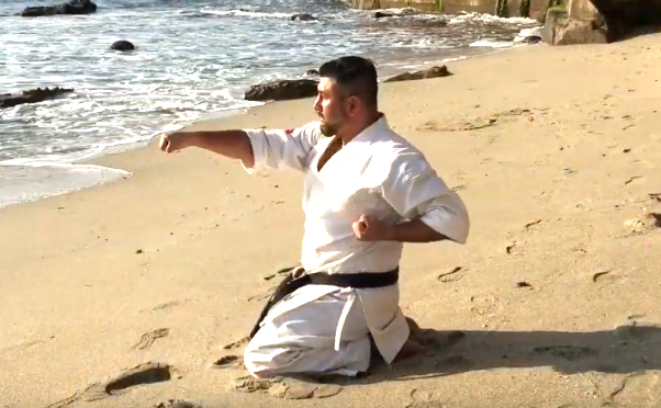 Seiken Choku Zuki or Horizontal Punch in Karate 2
