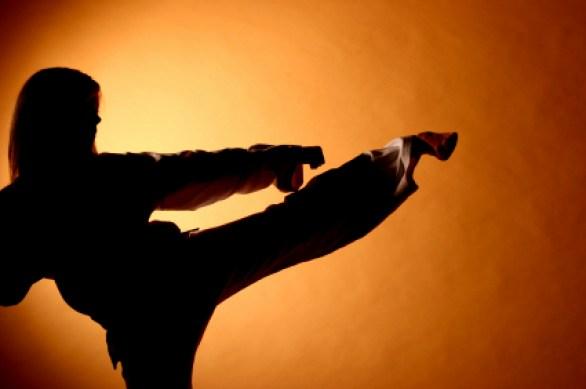 Martial Arts_america