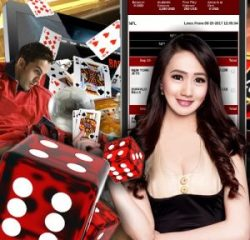 The Most Trusted Online Gambling Products Provider in Asia