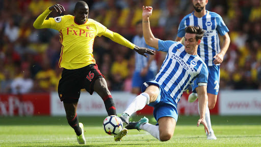 Brighton vs. Watford Match Analysis and Prediction