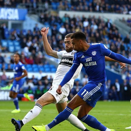 Fulham vs Cardiff match Analysis and Prediction