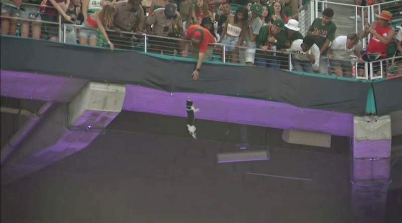 Video: Miami fans use American flag to save falling cat at Hard Rock Stadium