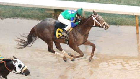 Far Right won his second straight stakes race at Oaklawn (Coady Photography)