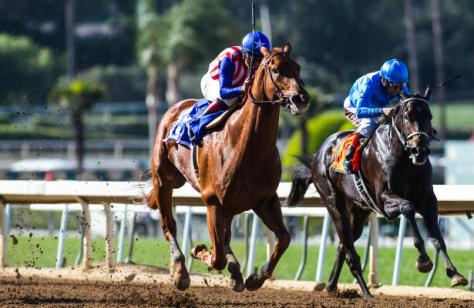 Dortmund (#3, blue saddle towel) wins the San Felipe Stakes (Zoe Metz/Eclipse Sportswire)