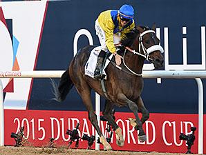 Mubtaahij Cruises To UAE Derby Win