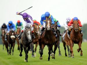 Horse Racing: History| Rules| Horse Bet| Object| Equipments