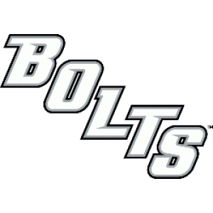 Image result for tampa bay lightning bolts logo
