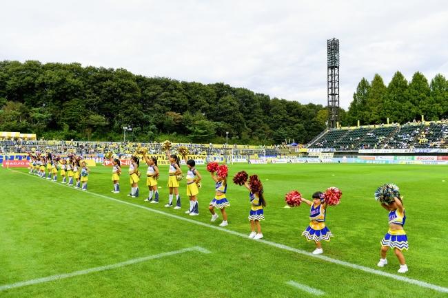 栃木SC、【芝お持ち帰り自由】11/10(日)ホーム最終戦、スタジアムのピッチを開放!