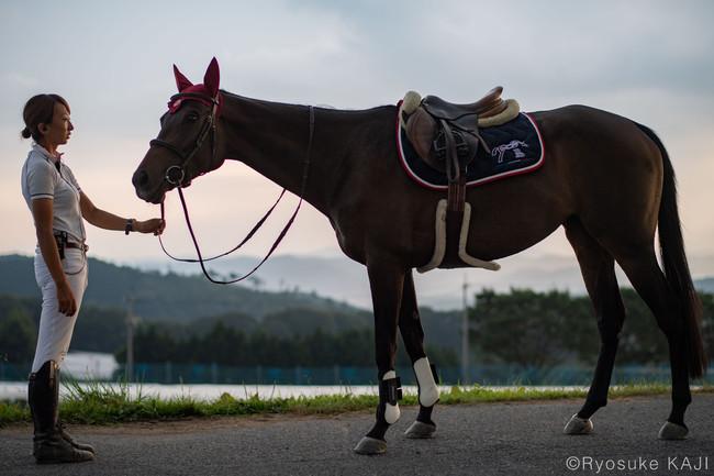 薩摩おごじょのサラブレッド、ゲヴュルツが引退競走馬杯に参戦