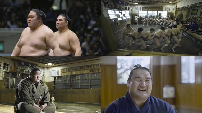 世界初!大相撲ドキュメンタリー映画『相撲道~サムライを継ぐ者たち~』の公開が決定!ド迫力の映像と臨場感たっぷりの音で力士の生き様を活写!