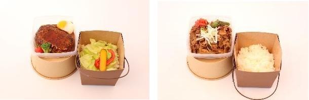 ロコモコ丼 牛丼