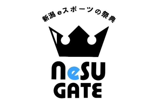 コロナ禍はオンラインでe-sportsを楽しもう!新潟県eスポーツ連盟主催の「e-sportsオンライン大会」を開催
