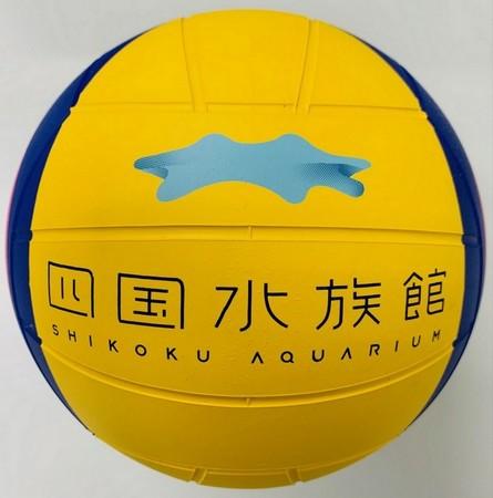 四国水族館様へイルカのボール遊び用ミカサの特製ボールの贈呈式を開催します