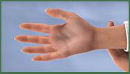 Foot Thumbnail