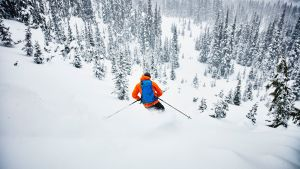Dr. Cole's Skiing Accident: Identifying the Severity of an Acute Injury