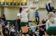 Two Phins Recognized as Vball POTW