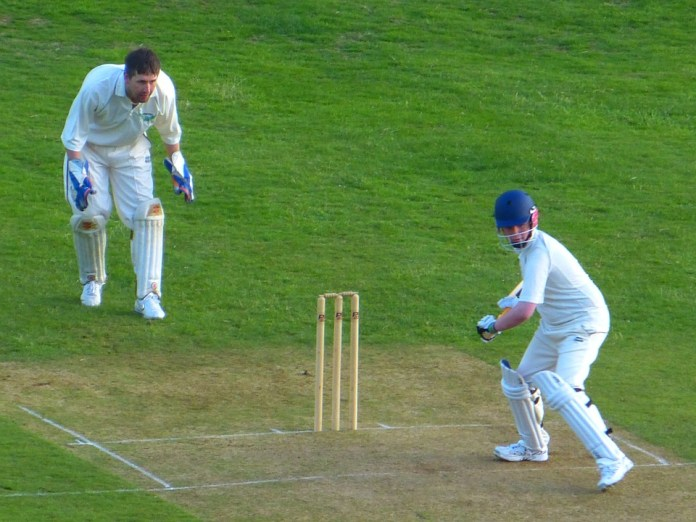 cricket software