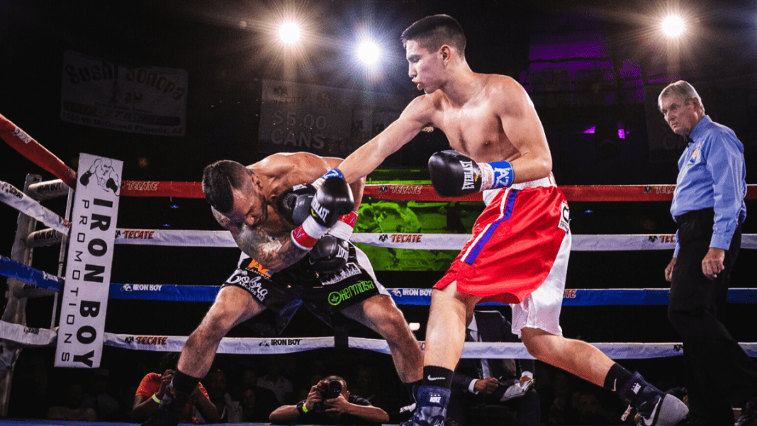 Boxing Online Stores