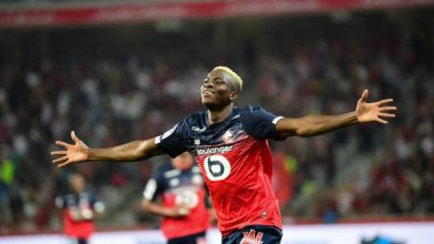 Photo of Victor Osimhen scores again in Lille home win against Angers