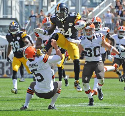 Image result for steelers beat browns