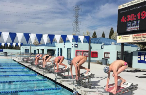 Meet the champions at NorCal High School Swim Championships