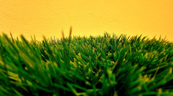 Does artificial turf cause more injuries?