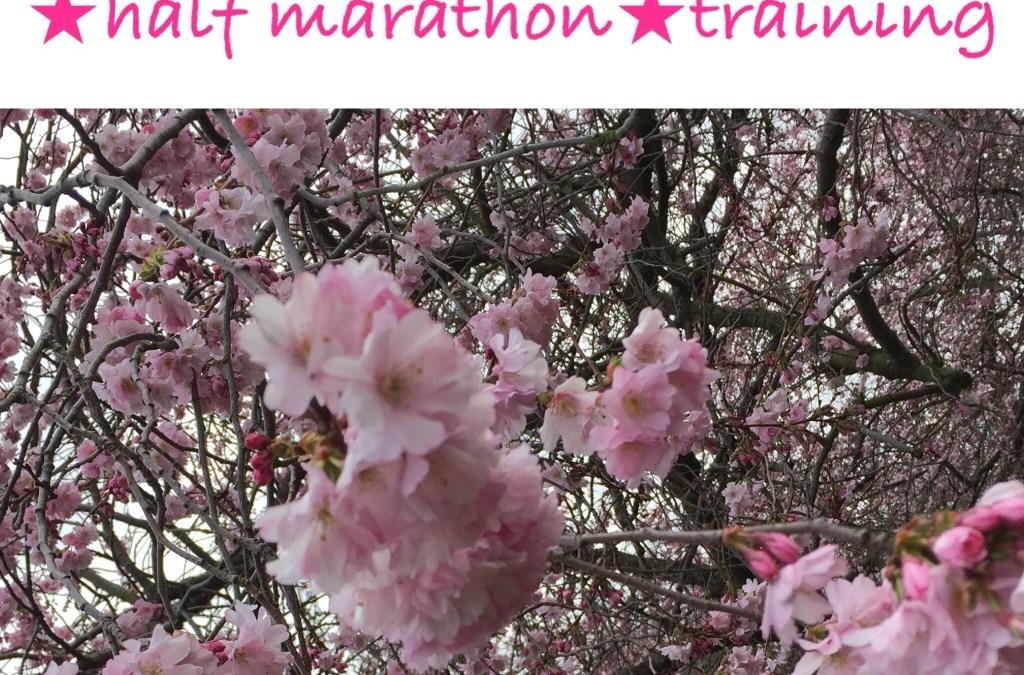 Update Halbmarathonvorbereitung