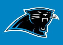 Carolina Panthers Owner David Tepper's Net Worth