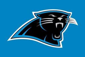 Carolina Panthers Owner David Tepper Net Worth