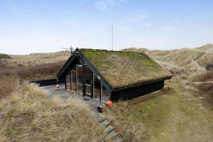 Căsuţa cu acoperiş verde