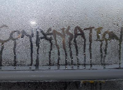 Prea multă umiditate la interior? Iată cum poţi remedia