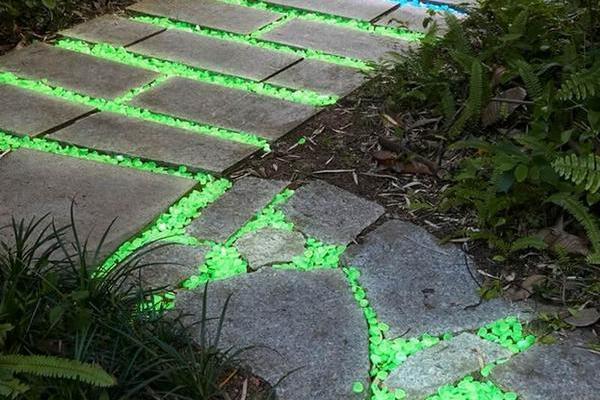pietricele fosforescente in gradina
