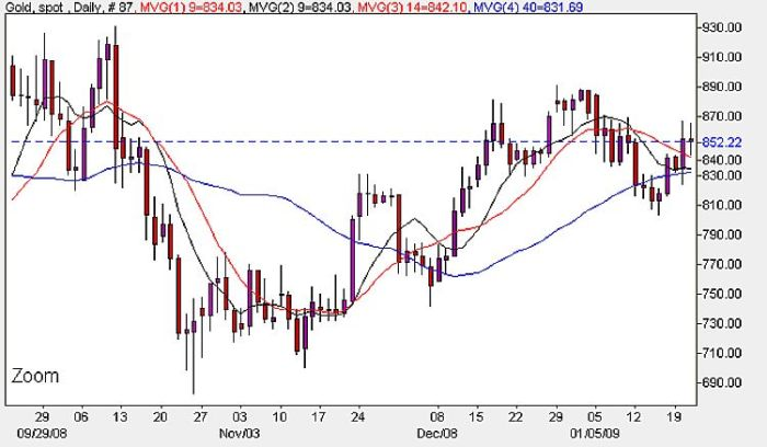 Spot Gold Prices Today - Daily Chart 23rd January 2009
