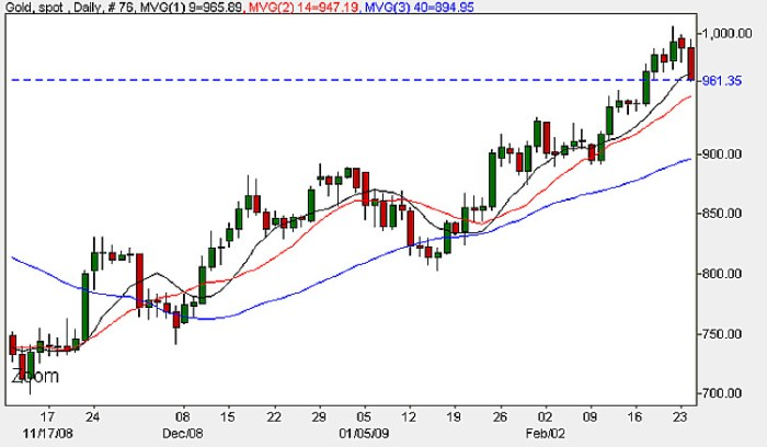 Spot Gold Prices - Daily Chart 25th February 2009