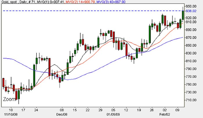 Spot Gold Price - Daily Price Chart February 12th 2009