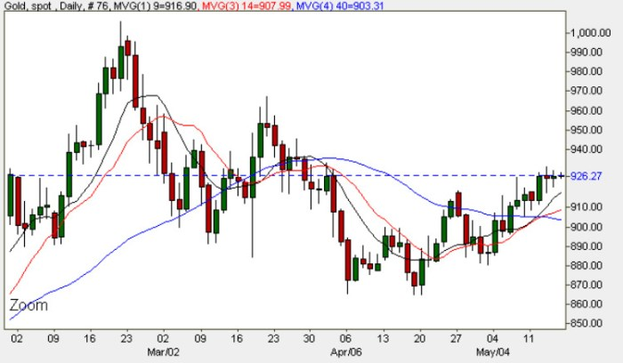 Gold Spot Price - Daily Gold Chart For Spot Gold Prices 15th May 2009